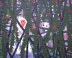 Pop 3, 125 x 100 cm, olieverf op linnen, 2010